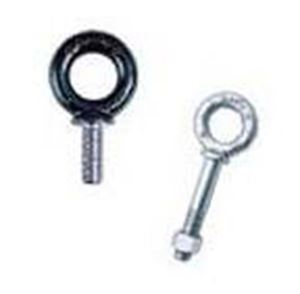 Picture for category Eye Bolts